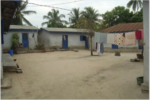2006-Our-compound-L